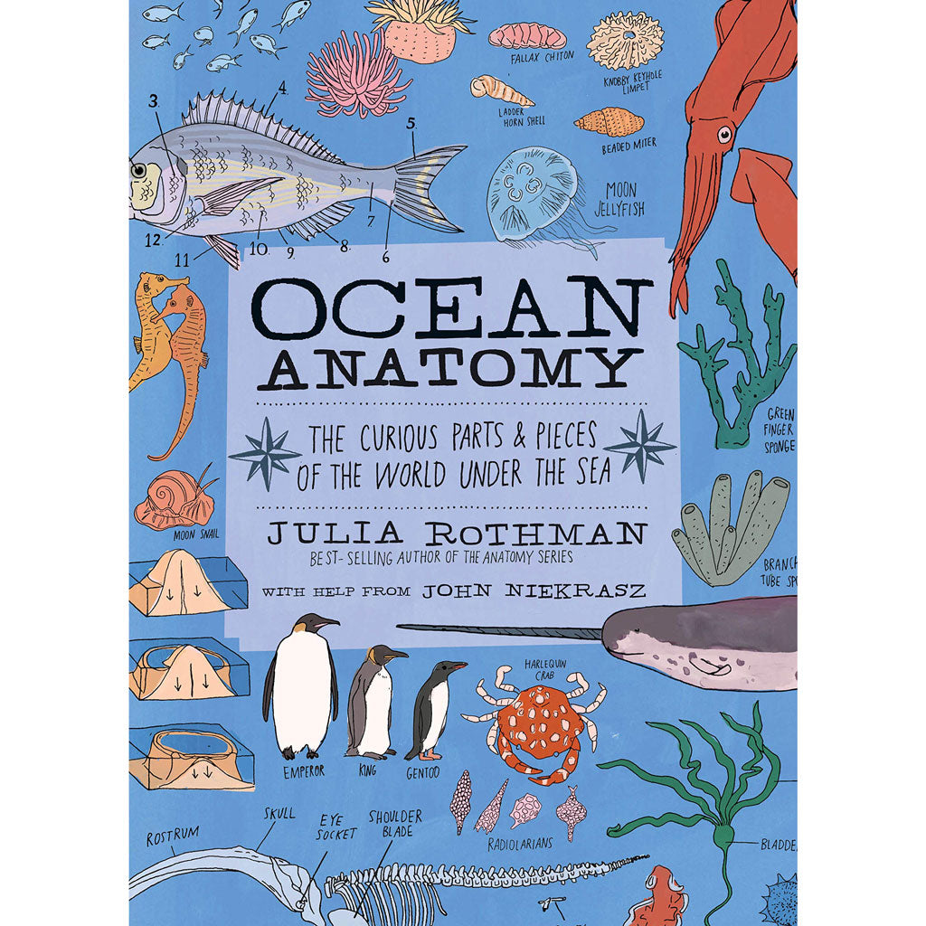 Ocean Anatomy: The Curious Parts & Pieces of the World under the Sea by Julia Rothman