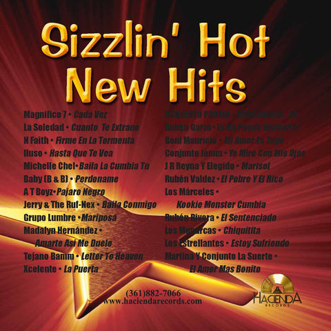 Various Artists - Hot New Sizzlin' Hits