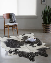 Load image into Gallery viewer, Loloi II Rug Bryce BZ-01 Black/Silver
