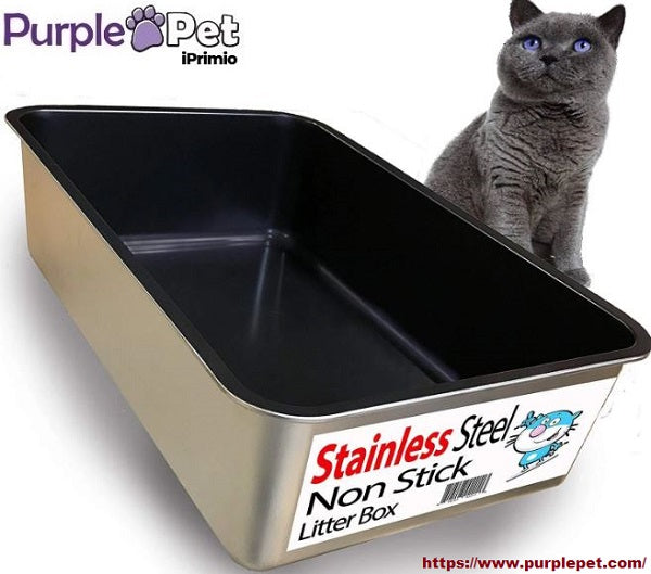 What you Need to Know about Cat Litter Boxes