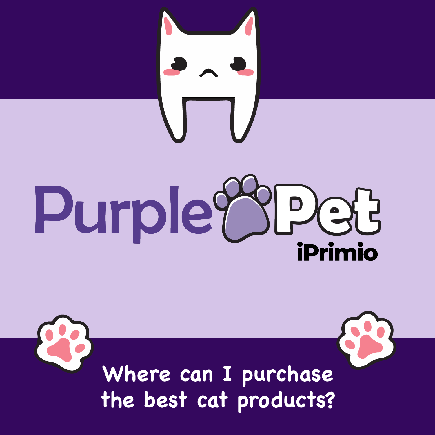 Where can I Purchase the Best Cat Products
