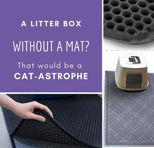 Choosing a Cat Litter Mat for Cats