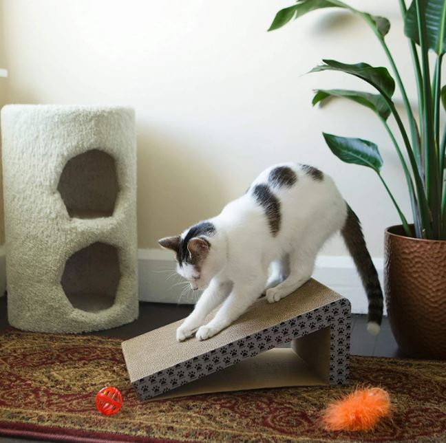 Cat Scratching Post - The Ultimate Stressbuster for Cats
