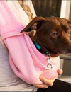 The Only Pet Sling Carrier that your Dog will Love