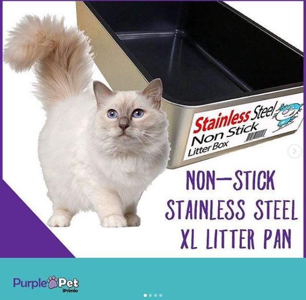 Litter Box: A Need not an Option!