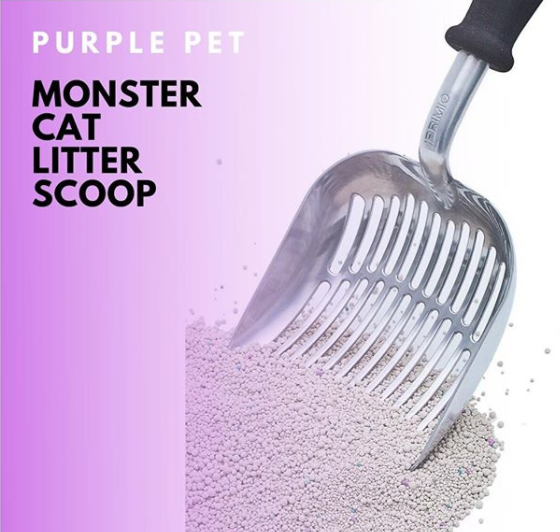 Where can I Find the Best Litter Cat Scoop