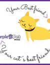 Why is Purple Pet Every Pet Owners' Favourite Place