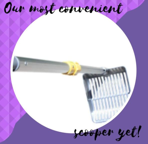 Advantages of Using A Good Quality Litter Scooper