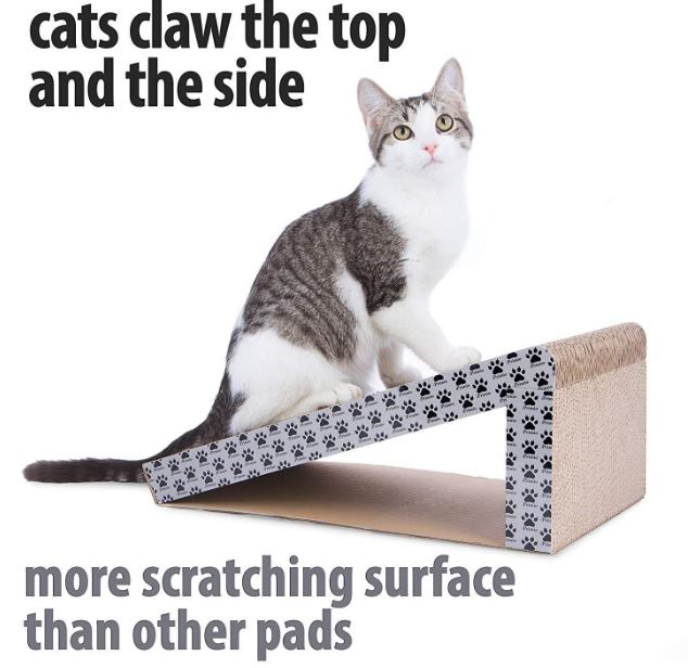 Why does your Cat Need a Scratching Post and where to Buy it?