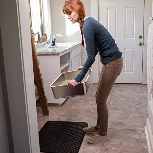 Stainless Steel Cat Litter Box, Never Absorbs Odour
