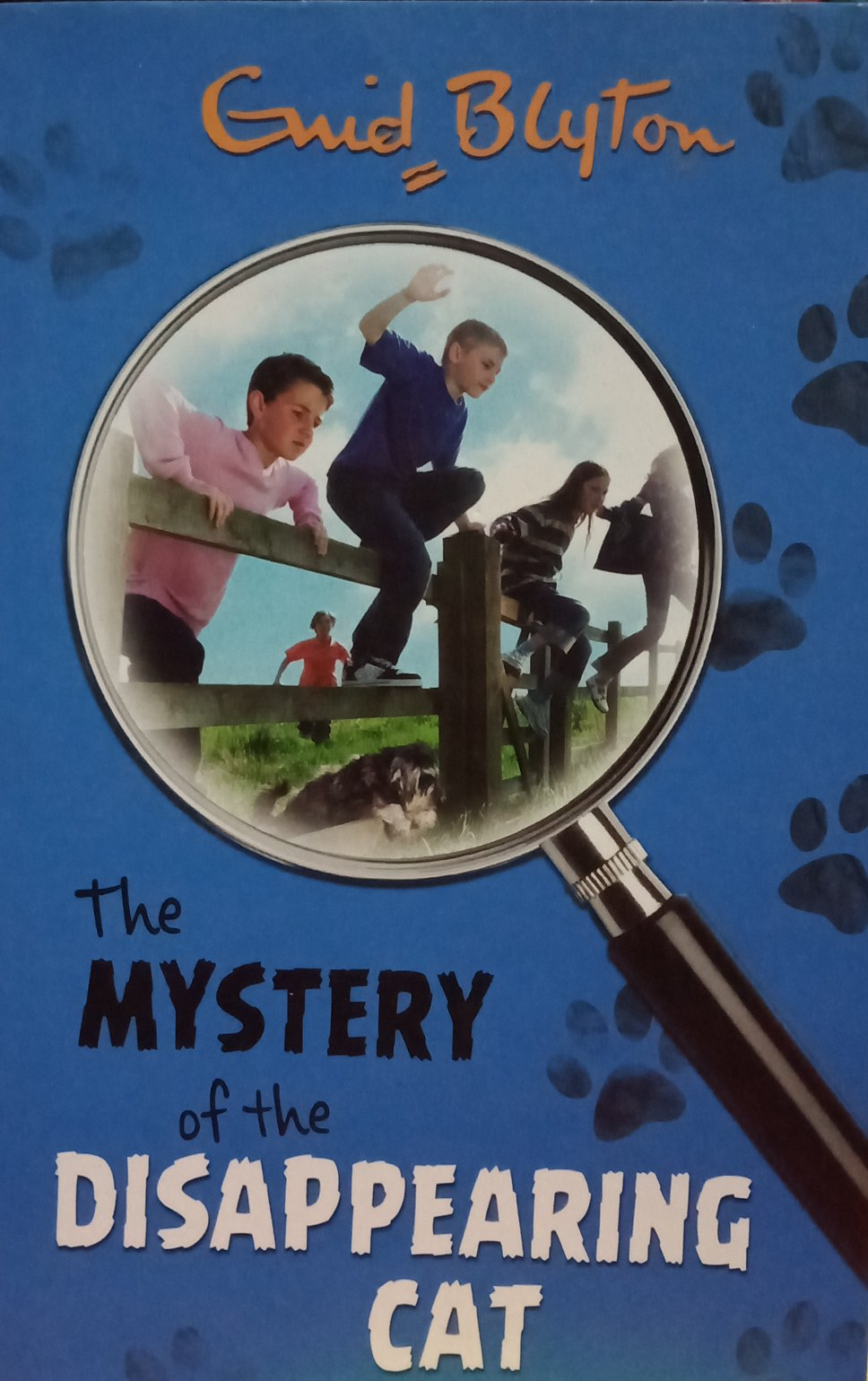 The mystery of the disappearing cat by guid blyton