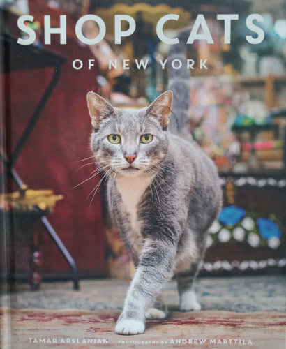 Shop Cats by Tamar Arslanian