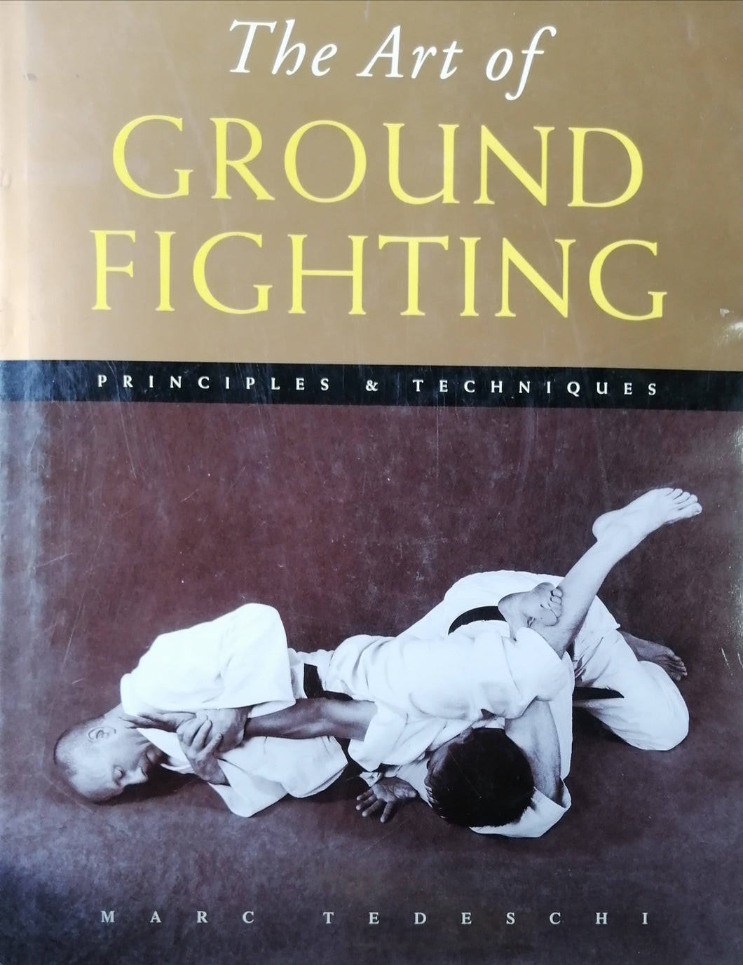The art of GROUND FIGHTING by Marc Teseschi