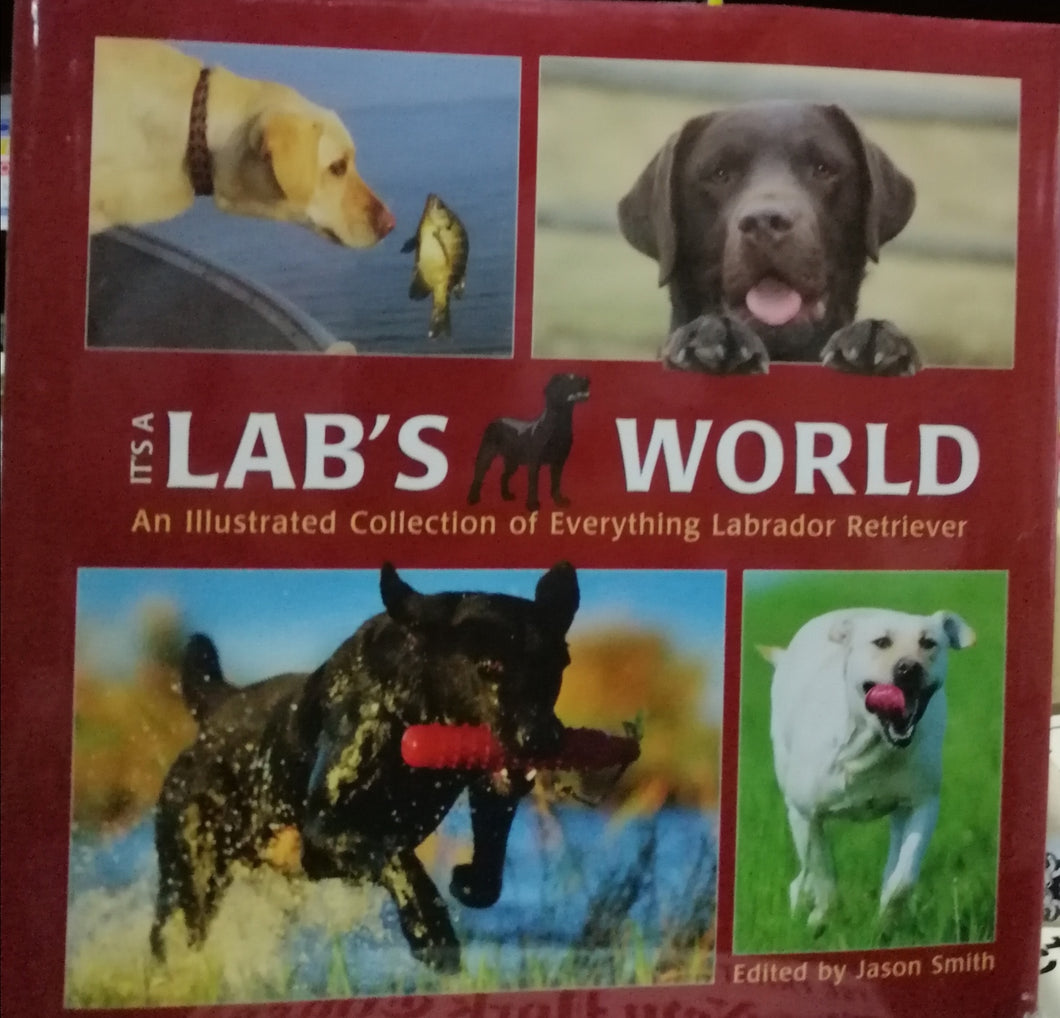 it's a Lab's World by: Jayson Smith