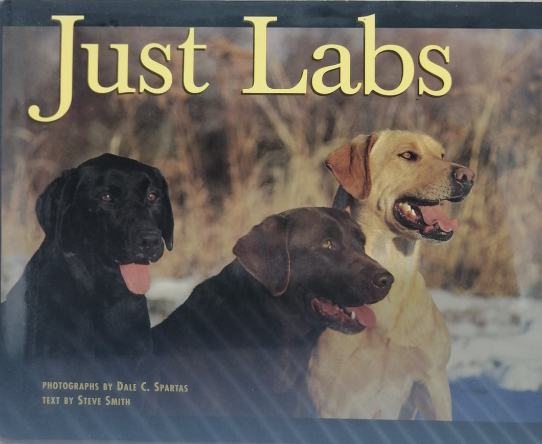 Just labs by Steve Smith