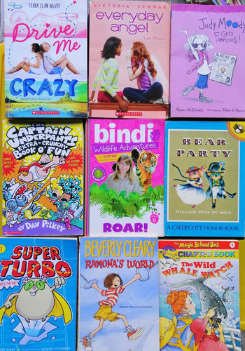 Children's Book Bundle ( Chapterbooks for young adult)