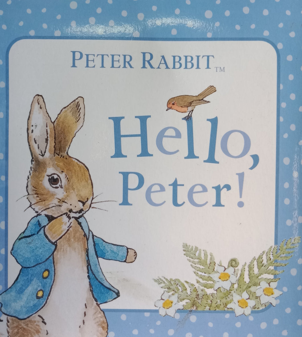 Hello Peter! By Petter Rabbit