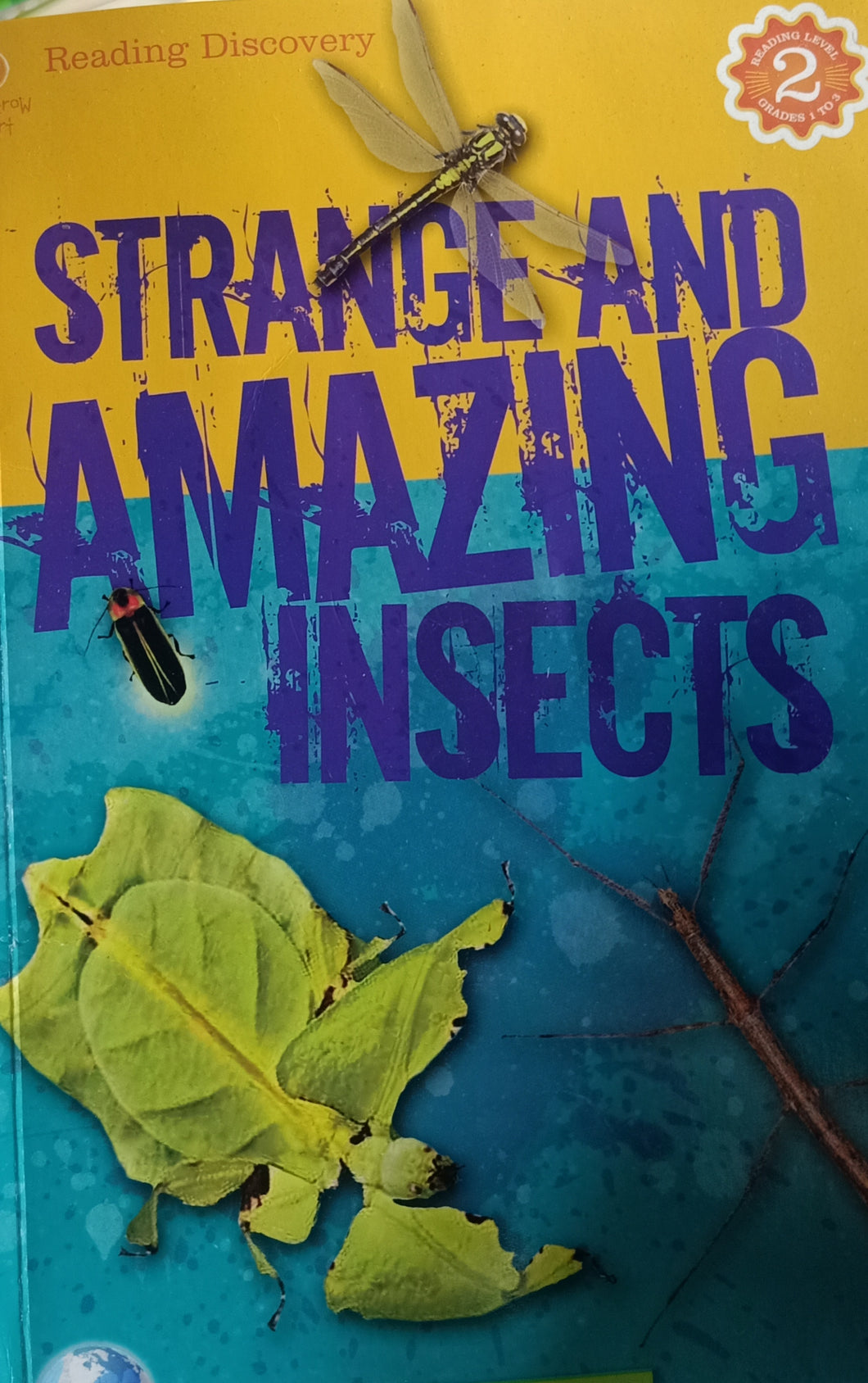 Strange And Amazing Insects