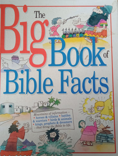 The Big Book Of Bible Facts by Rhona Pipe