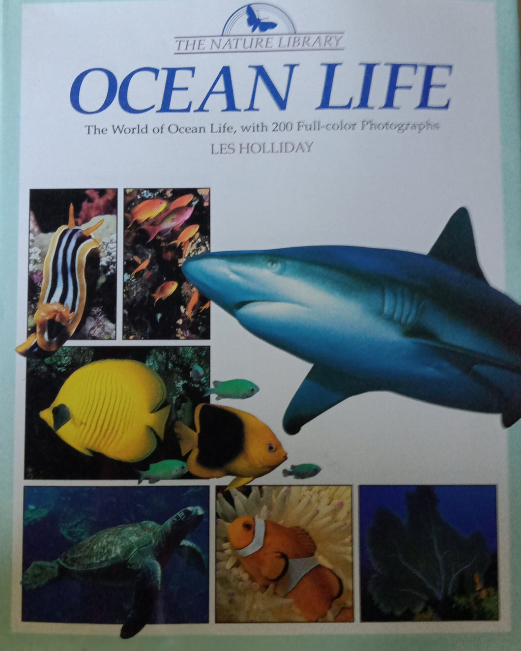 Ocean Life by Les Holiday