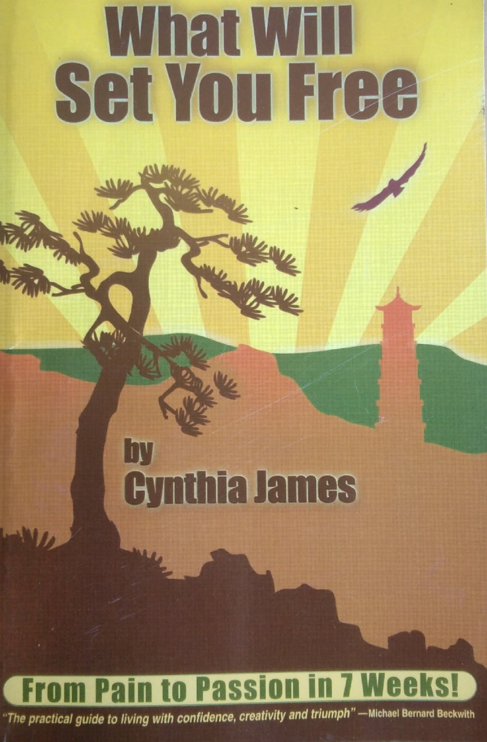 What Will Set You Free by Cynthia James