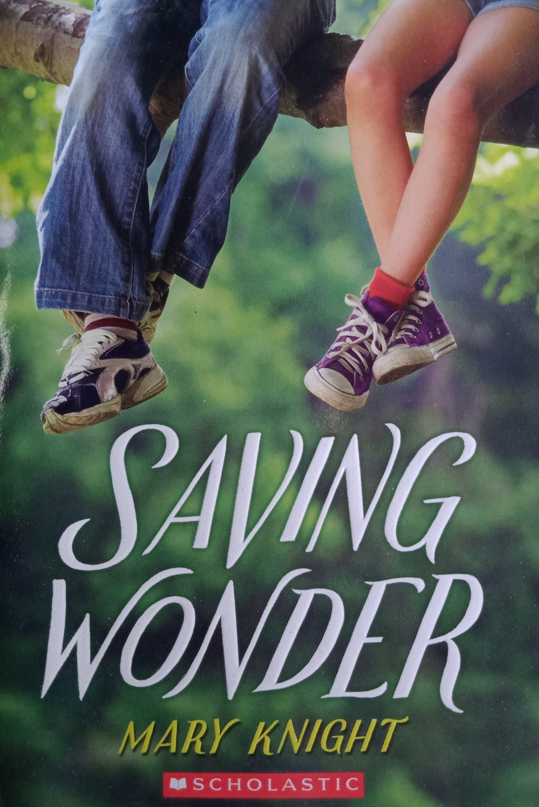 Saving Wonder by Mary Knight