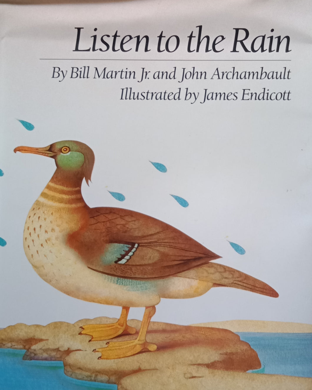 Listen To The Rain by Bill Martin