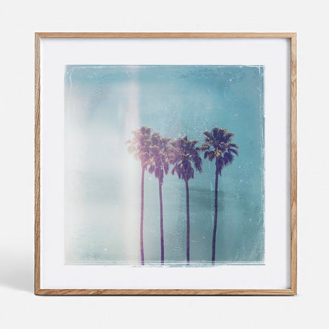 Blacklist | Polaroid Palms Large Art Print in Tasmanian Oak Frame