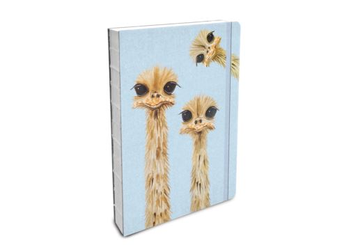 Bobangles - Compact Journal - Ostriches