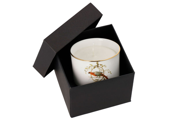 "Bone China Candle ""Le Perroquet"" - Castlebird Rose"