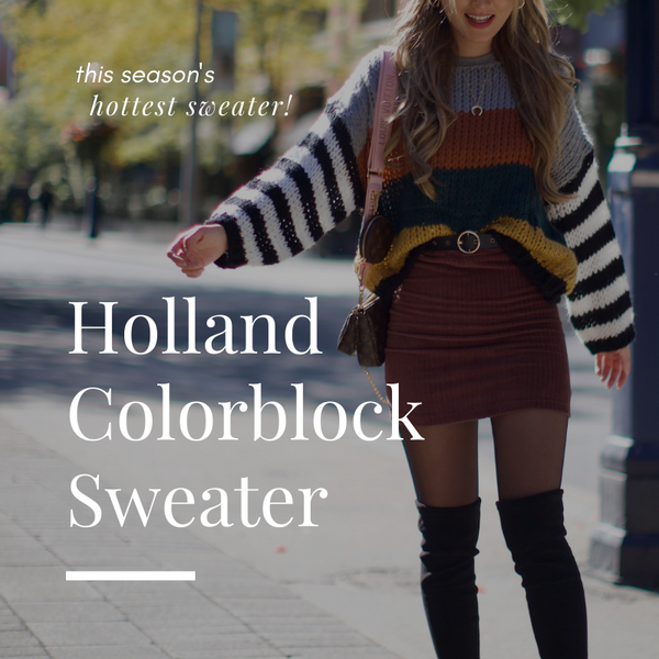 The Season's Hottest Sweater: Holland Colorblock Sweater | Priceless