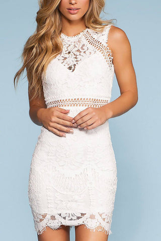 Lace Bodycon Homecoming Dress