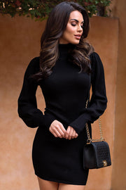 Eclipse Black Ribbed Bodycon Turtleneck Dress
