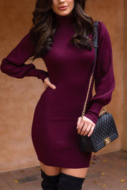 Wine Ribbed Bodycon Turtleneck Dress