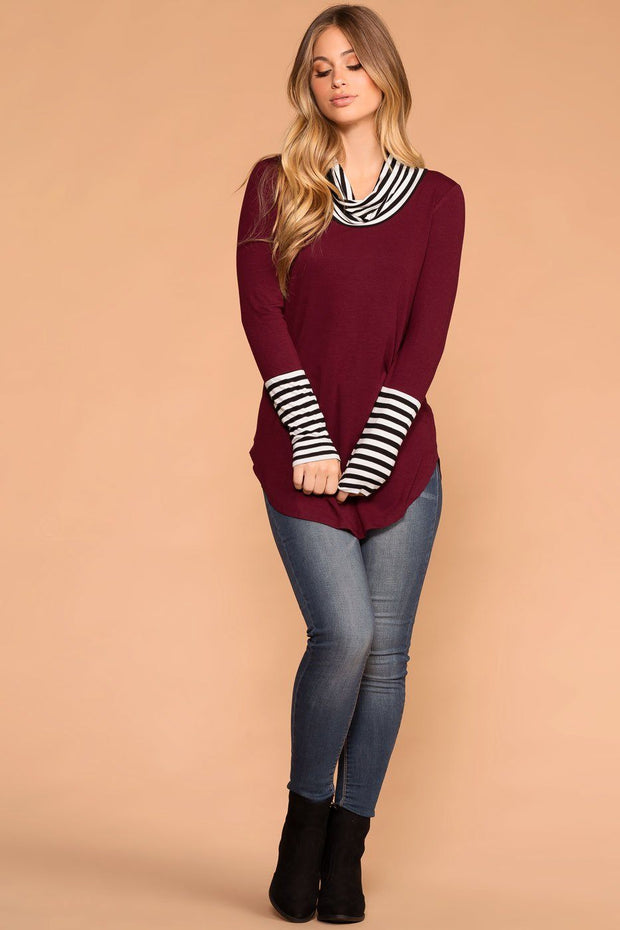 Burgundy | Stripe Turtleneck Top | Longsleeve | Priceless