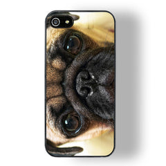 Pug Face iPhone 5/5S Case
