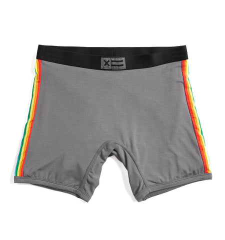 "6"" Boxer Briefs - MicroModal Graphite Rainbow Stripe-TomboyX"