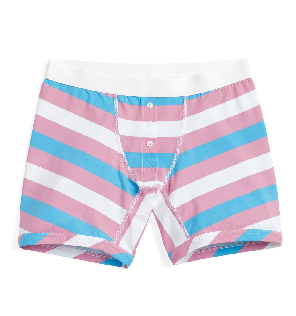 "6"" Fly - Trans Pride Stripes"