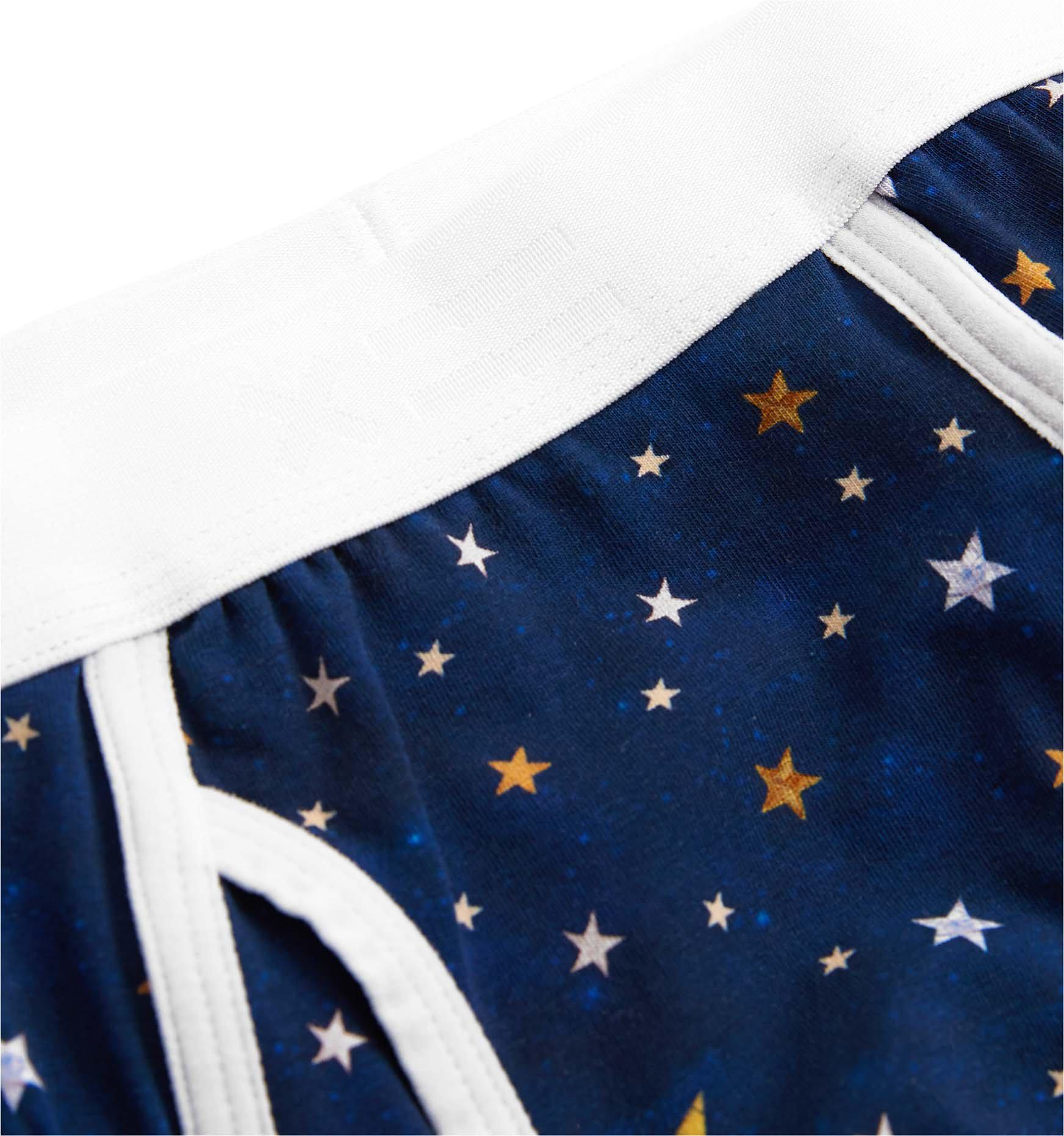 390bfb7251f1 Iconic Briefs - Stars Print – TomboyX
