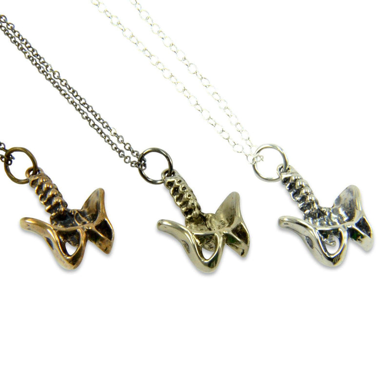 Human Pelvis Necklace - Moon Raven Designs
