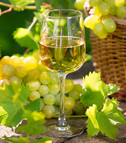 New World White Wine of the Month Club Canada