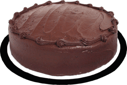 Chocolate Fudge Single Layer Cake