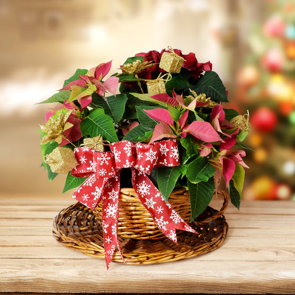 Christmas Cheer Bouquet, Christmas gift baskets, floral gift baskets
