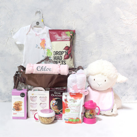 BABY GIRL & THE LITTLE LAMB GIFT BASKET, baby girl gift basket, welcome home baby gifts, new parent gifts