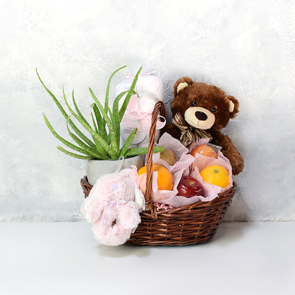 Fresh Fruit & Succulent Baby Gift Set, baby gift baskets, baby gifts, gift baskets
