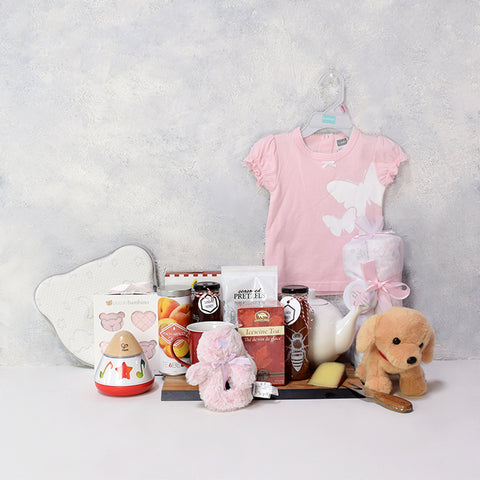 Baby Girl's First Gift Basket, baby girl gift hamper, newborns, new parents