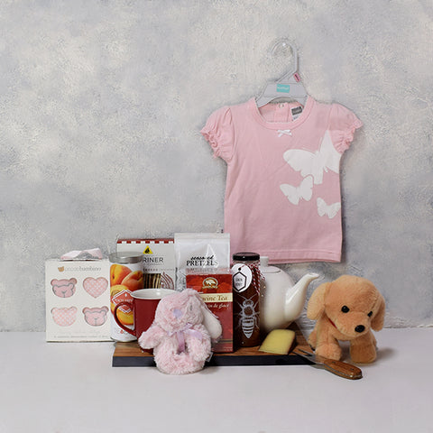 Medley of Baby Gifts For a Girl, baby girl gift hamper, newborns, new parents.