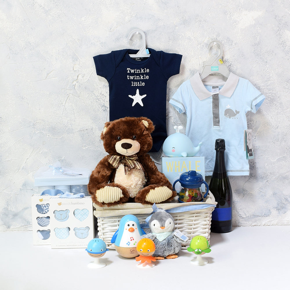 Baby Boy Fun & Celebration Basket, baby gift baskets, baby boy, baby gift, new parent, baby toys