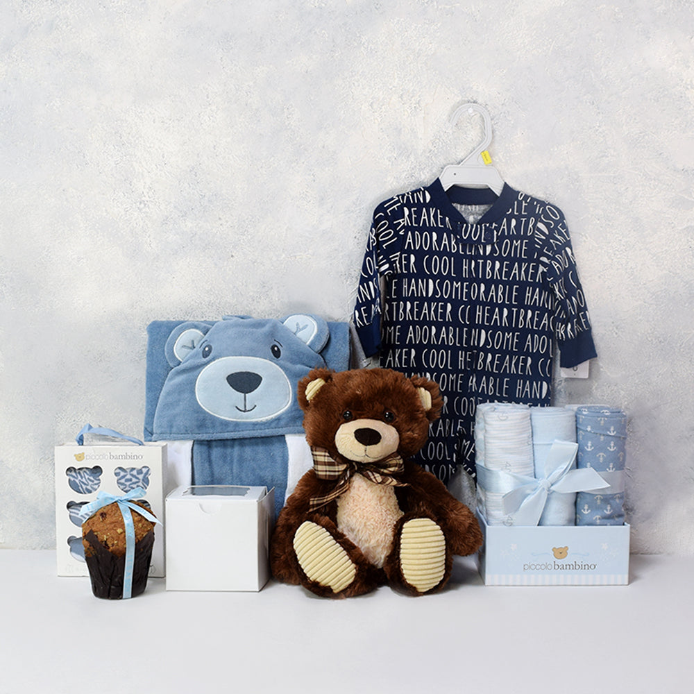 Adorable Baby Boy Gift Basket, baby boy gift hamper, newborns, new parents