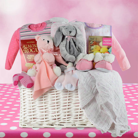 Newborn Baby Girl Gift Basket
